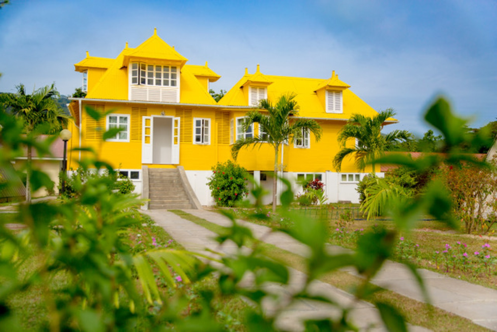 Votre future maison en briques…d'urine…