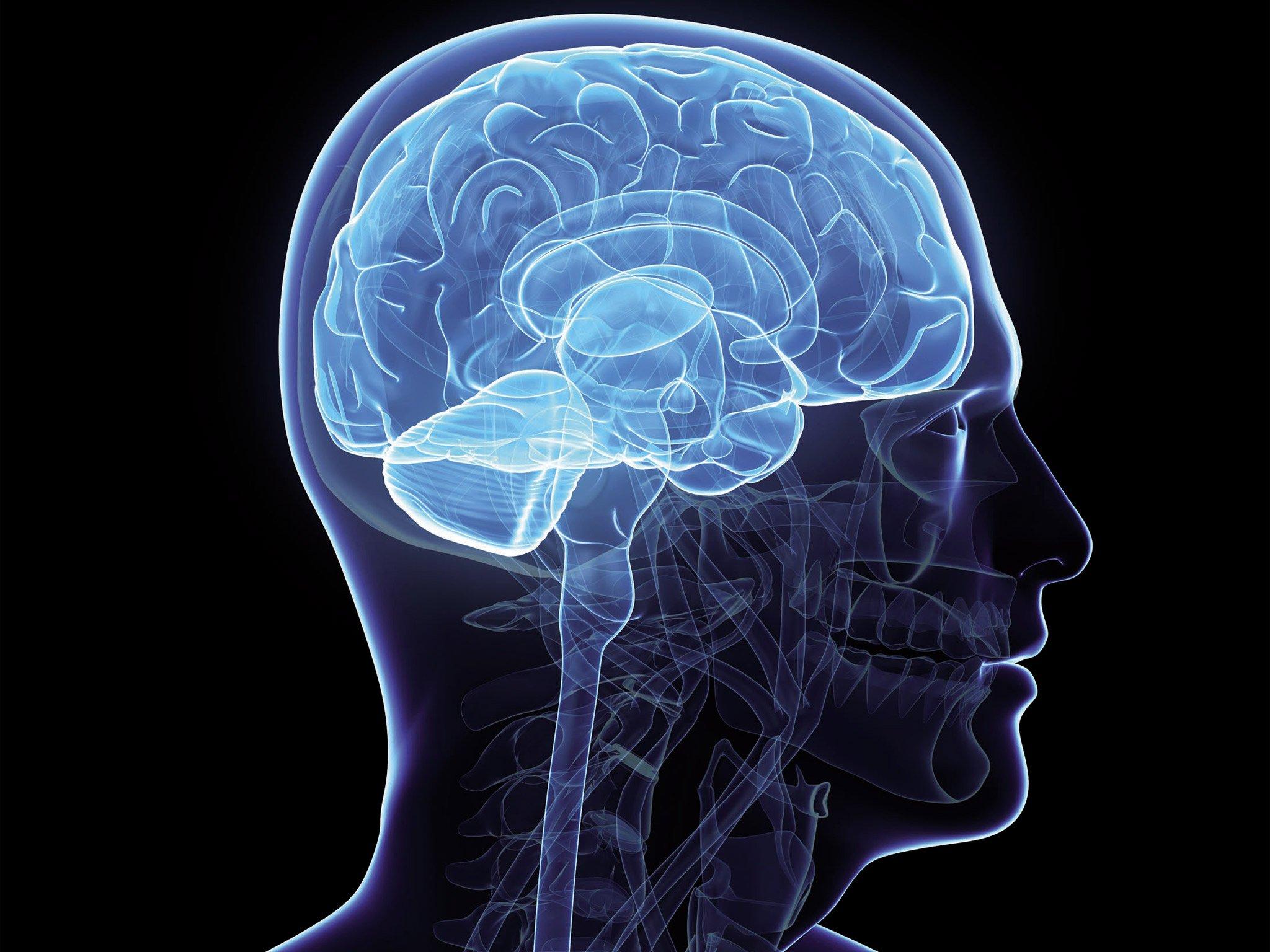 Bonnes nouvelles pour les personnes souffrant de Parkinson ou d'Epilepsie